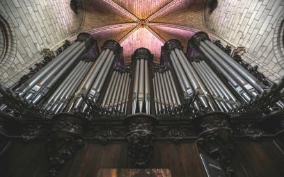 Ký ức về cây Đại phong cầm đặc biệt của Nhà thờ Đức Bà Paris