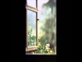 Embedded thumbnail for Họa Mi Hót Trong Mưa