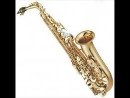 Embedded thumbnail for Giới thiệu kèn Saxophone